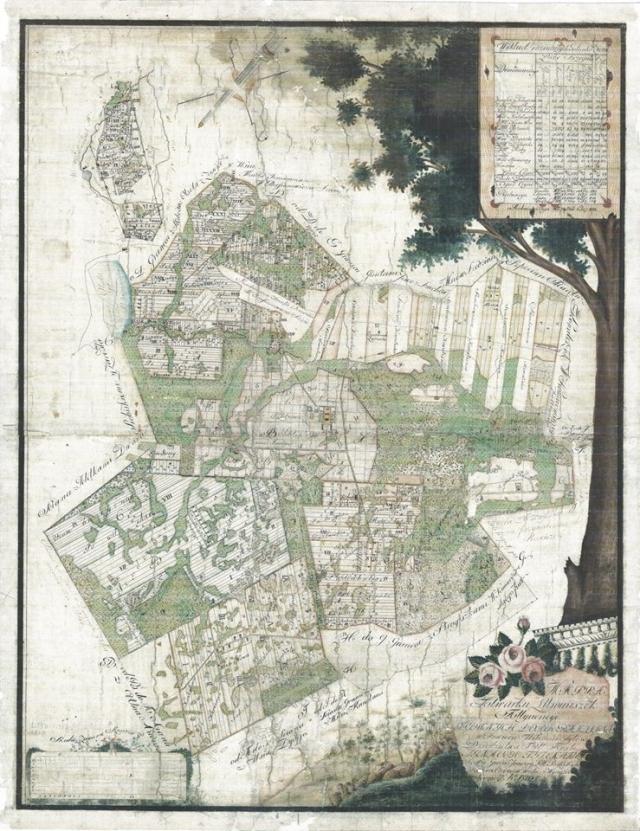 Rokiškio grafystės Litviniškių (dabar Sėlynė) palivarko žemėlapio braižyto 1810 m. skaitmeninė kopija.