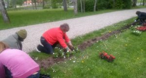 Muziejininkai sodina gėles. L. Dūdaitės nuotr.