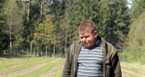 Romualdas Petronaitis rodė pernai pavasarį pasėtų ir ką tik baigtų ravėti pušaičių ežias. Į miškus jos iškeliaus po trejų metų.