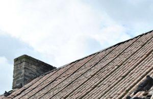 Nemažai žmonių atsisakė minties pakeisti sveikatai pavojingą stogo dangą.